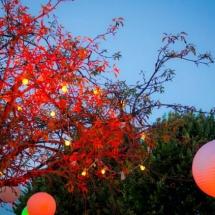 Lampions mariage Reflets Fleurs