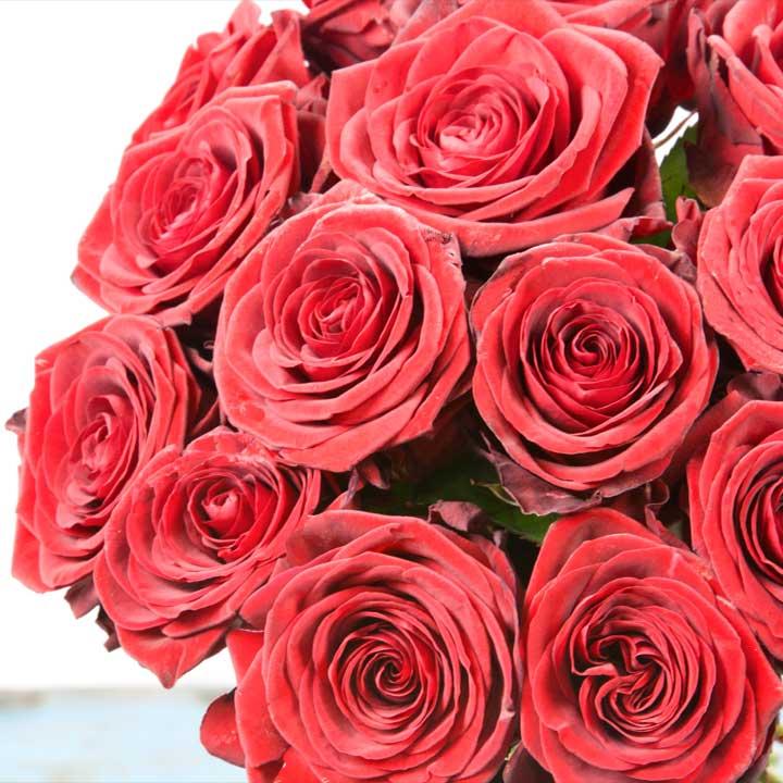 Bouquet de fleurs rose rouge for Bouquet de fleurs rose