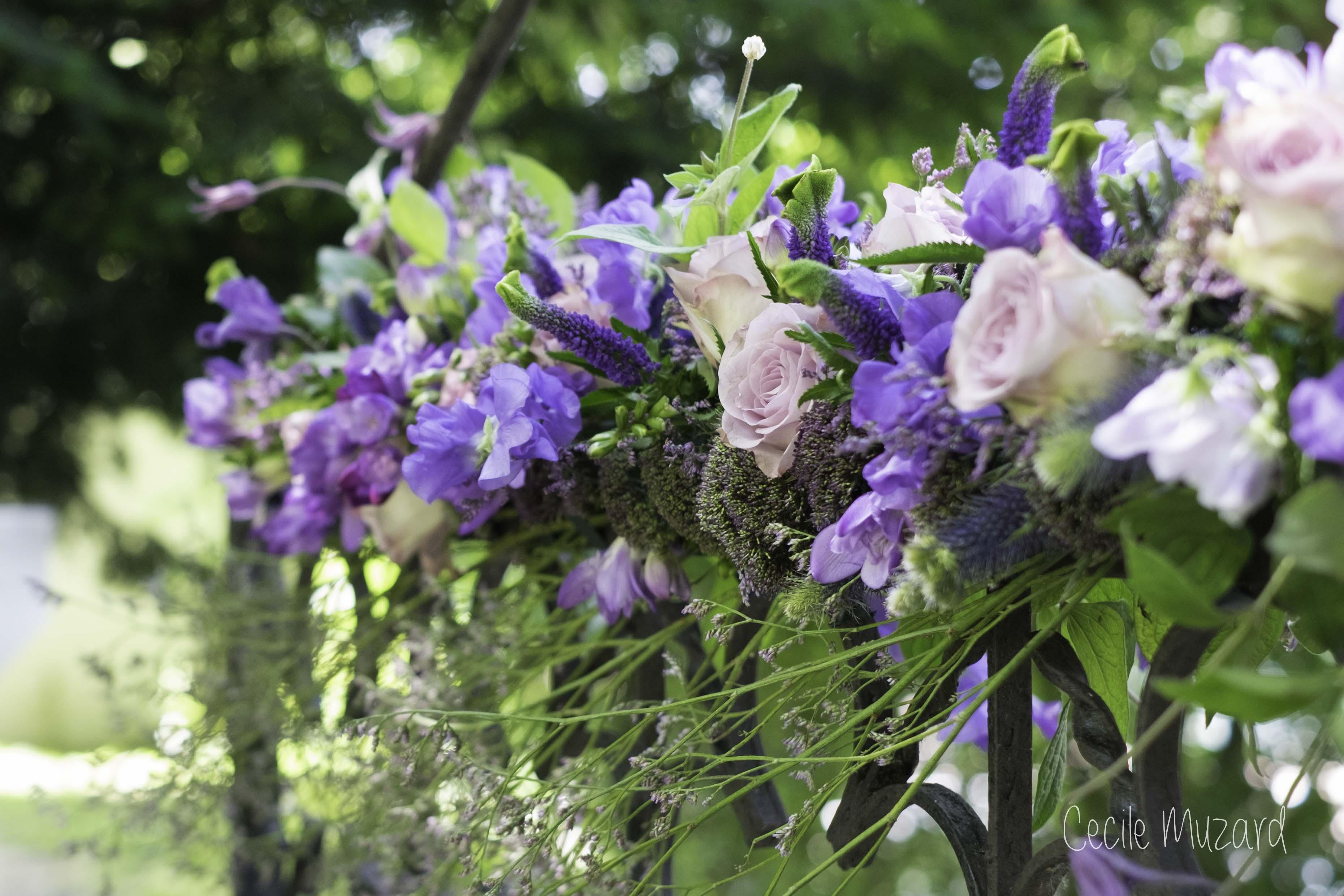 jolie portail fleuri de fleurs mauve