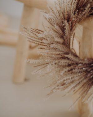 Couronne-miscanthus-automne-reflets-fleurs-novembre