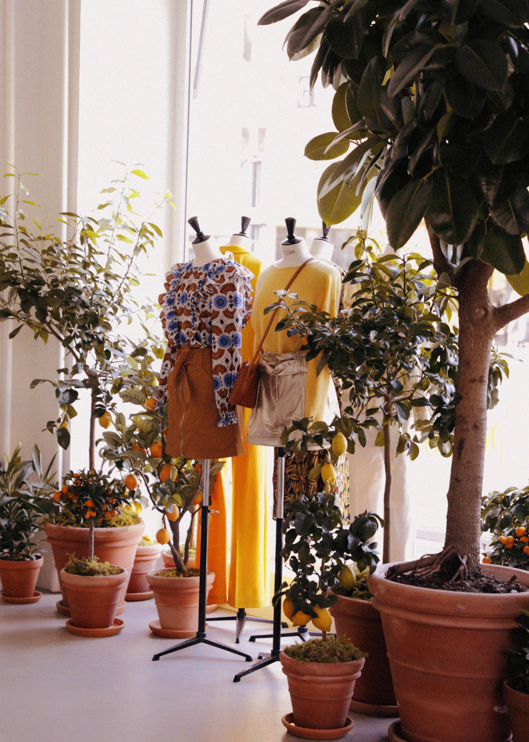 Reflets Fleurs - Scénographe floral - Fleuriste évènements Paris - Sezane