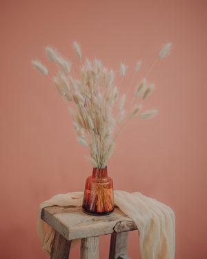 décoration fleurs séchées pampa